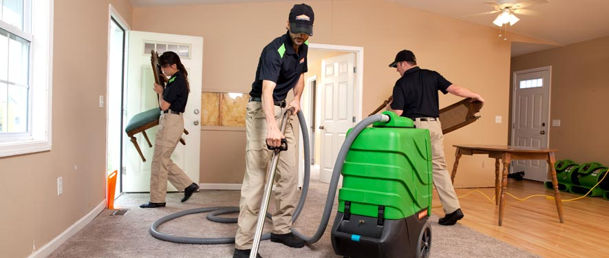 Tallahassee, FL cleaning services